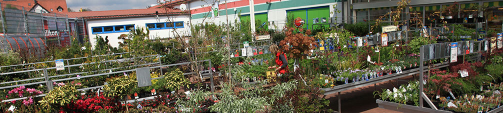Gartenhaus Holz Hagebaumarkt ~ Gartencenter  Holz im Garten  Eschenbach  hagebaumarkt